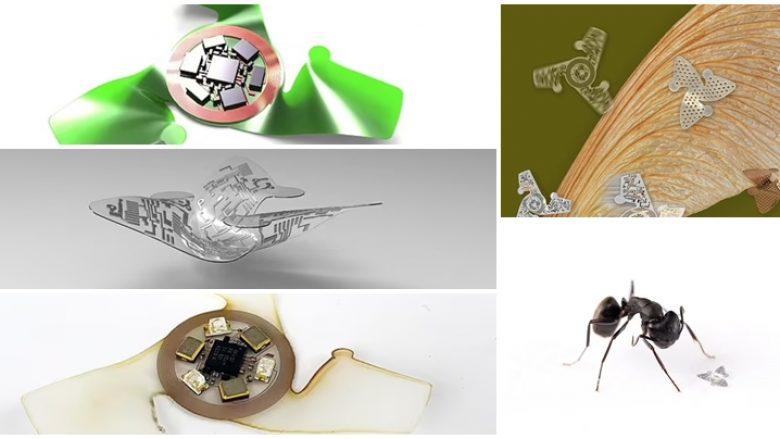 Mikroçipi fluturues me madhësi të kokrrës së zallit, ndihmon në monitorimin e sëmundjeve – ndotjen e ajrit dhe kontaminimin e ambientit