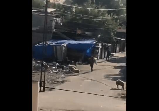 Luftë në rrugët e qytetit, çfarë po ndodh në Turqi /VIDEO
