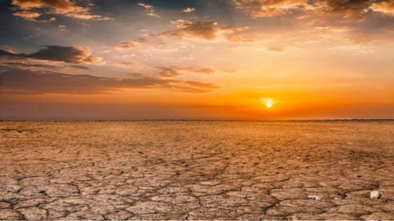 Ja sa përqind e tokës mbetet e paprekur nga njerëzit